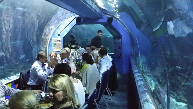 Friday 13 May 2016 Dinner at Reef HQ